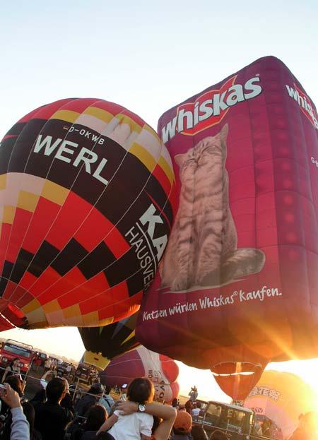 Hot Air Balloon Fiesta