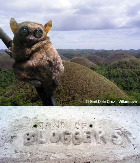The Bohol Experience!