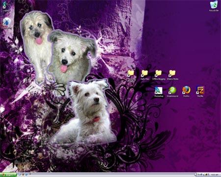 Gail's organized desktop