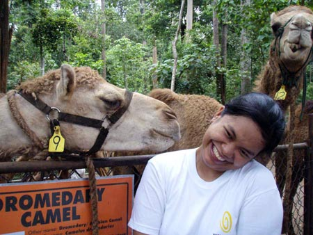 Me with the crazy camel